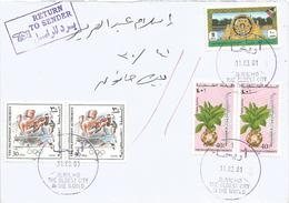 Palestina 2001 Jericho Boxing Hisham Palace Medicinal Plant Drimia Maritima Returned Cover Beit Hanun - Palestina