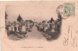 PM590 * Colombey-Les-Belles (Meurthe Et Moselle) Le Cimetière - 1906 - Colombey Les Belles