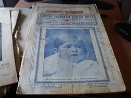 Glasnik Podmladka Crvenog Krsta  Junior Red Cross News  Beograd 1925 16 Pages Nj V Prestolonaslednik Petar - Books, Magazines, Comics