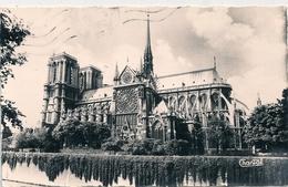 Cpsm 75 Paris 1 Cathédrale Notre Dame ( Rosace Sud ) - Notre Dame De Paris