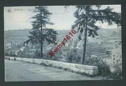 Dolhain - Panorama. Nels Série Dolhain N°45 - Dison