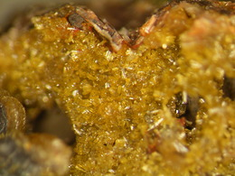 * TOP MIMETESITE Xls, Altenmittlau Quarry, Spessart, BRD * - Minerals