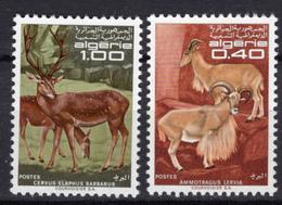 1968 - ALGERIA - Yv.  Nr. 477/478 - NH - (UP131.54) - Algeria (1962-...)