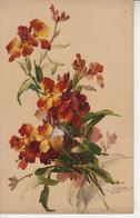 Illustrateur Catharina KLEIN - Fleurs  PRIX FIXE - Klein, Catharina