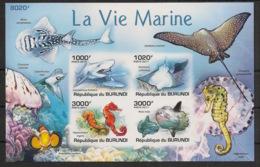 Burundi - 2011 - Bloc BF N°145 - Faune Marine - Non Dentelé / Imperf. - Neuf Luxe ** / MNH / Postfrisch - Cote 18€ - Mammifères Marins
