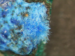 * CYANOTRICHITE Xls, Potrerillos, Chile * - Minerals