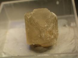 * SULFOHALITE Xl, Searless Lake, Trona, Kalifornia, USA * Z49 - Minerals