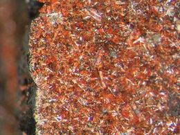 * OXYBERAUNITE Xls, Rotläufchen Mine, Wetzlar, Hessen, BRD * X62 - Minerals