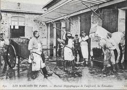 75 - PARIS - Abattoir Hippopbagique De Vaugirard - Les Échaudoirs - Cpm - Vierge - - Francia