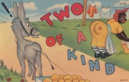 Black Americana, Humor, 'Two Of A Kind' Black Woman Hangs Laundry, Donkey/Mule C1940s Vintage Linen Postcard - Black Americana