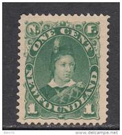 1887   YVERT  Nº  40   ( * ) - Newfoundland