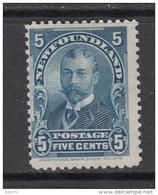 1897 - 1901   YVERT  Nº  70   ( *) - Newfoundland