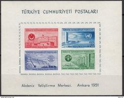 1952  MICHEL Nº BLOCK 4  MNH - 1921-... República