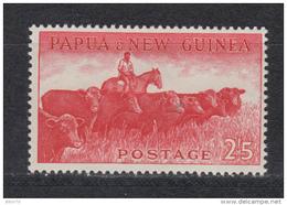 1958 - 1964    YVERT  Nº  33    / * / - Papúa Nueva Guinea
