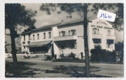 """CPM -19610 -83-St Aygulf - Carte Photo Hôtel  """"Les Grands Louvans"""" Vers 1960 -Envoi Gratuit - Saint-Aygulf"""