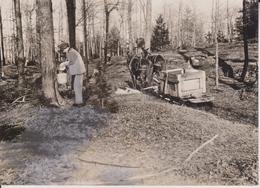 MAPLE SUGAR MAKING IN THE PROVINCE OF QUEBEC GATHERING THE SAP  ETAT  SEE SCAN   Fonds Victor FORBIN (1864-1947) - Lugares