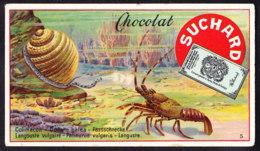 CHROMO Chocolat SUCHARD    Langouste  Snail Crawfish Lobster      Serie 183 - Suchard