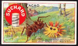 CHROMO Chocolat SUCHARD    Melodon      Serie 183 - Suchard