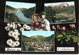 Saluti Da Calalzo - Souvenir De...