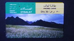 VAE - 1991 - Col:AE-ETI-TAM-0050 - Used - Look Scans - Ver. Arab. Emirate