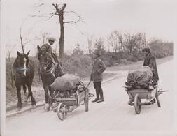 NORFOLK UK THE FARM STRIKE HORSFORD NEAR NORWICH 1923   Fonds Victor FORBIN (1864-1947) - Lugares