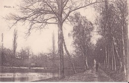 CPA - PLAISIR - 5 . Bois De Sainte Apolline - L'étang - Plaisir