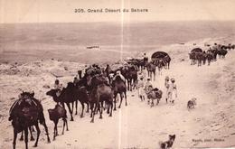 ALGERIE - LE GRAND DESERT DU SAHARA - Scènes & Types