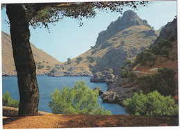 Mallorca  - La Calobra - (Baleares, Espana/Spain) - Mallorca