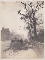 LONDON LONDRES  KENSINGTON HIGH TREES   Fonds Victor FORBIN (1864-1947) - Lugares
