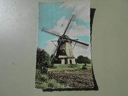 PAYS BAS HOLLAND HOLLANDSE MOLEN - Pays-Bas