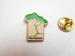 Beau Pin's , Nature , Arbre Pin Pignon , Forêt - Pin's