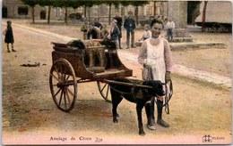 45 - Un Attelage De Chien. - France