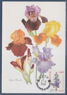 "= Iris ""Princesse Caroline De Monaco"" Carte Postale 02.12.2000 N°2282 Exposition Philatélique Internationale - Maximum Cards"