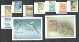 P101 COMORES FISH & MARINE LIFE 1SET+2BL MNH - Vie Marine