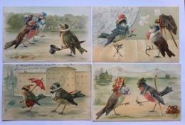 Brasch ? 4 Cartes Illustrées D'oiseaux Birds Vogel - Illustratoren & Fotografen