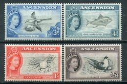 1956- ASCENSION- FISHES & BIRDS - 4 VAL.  M.N.H. LUXE !! - Ascension (Ile De L')
