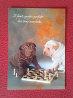 TARJETA POSTAL POST CARD CARTE POSTALE PERROS JUGANDO AL AJEDREZ DOG PLAYING CHESS CHIENS JOUANT AUX ÉCHECS VER FOTOS - Perros