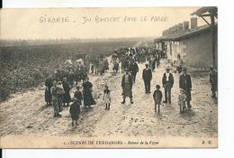 Scènes De Vendanges ( Gironde) Métiers / Retour De La Vigne , Carte Partie Du Bouscat Pour Le Porge , 1914 - Autres Communes