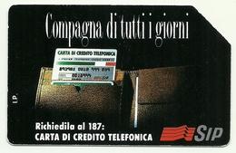 Italia - Tessera Telefonica Da 5.000 Lire N. 213 - Compagna Di Tutti I Giorni - Pubbliche Ordinarie