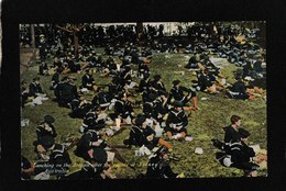 Sydney,Australia-Lunching On The Domain After The Parade, Aug 23,1908 - Antique Postcard - Australia
