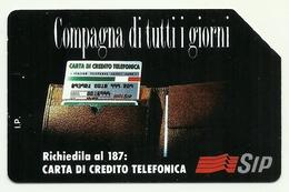 Italia - Tessera Telefonica Da 10.000 Lire N. 214 - Compagna Di Tutti I Giorni - Italia