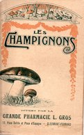 Les Champignons.....avec La Planche De 40 Sortes De Champignons - Nature