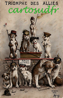 TRIOMPHE DES ALLIES CHIENS CARTE HUMOUR (NOIR) - Gekleidete Tiere