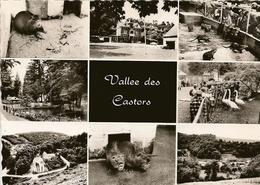 MAIZERET. Elevage De Castors Du Château De Vil En Val, Parc D'attractions, Terrasses, Restaurant. - Andenne