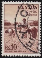 Ceylon      .   SG      .  43       .   O      .       Cancelled      .   /    .   Gebruikt - Ceylon (...-1947)
