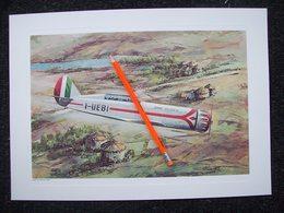 STAMPA AEREO NARDI FN-305 D 1936 CON DISEGNO DI AMLETO FIORE - Posters