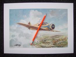 STAMPA AEREO  NARDI FN-310  1937    CON DISEGNO DI AMLETO FIORE - Posters