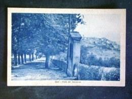 LAZIO -LATINA -CORI -F.P. LOTTO N°154 - Latina