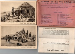 """"""" Scènes De La Vie Gauloise """" - 25 Documents Sur Cartes ( 9 X 14 ) + Notice - Histoire"""