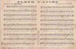 FLEUR D'AJONC - Chanson De Théodore Botrel, Musique De E. Durand - Bretagne